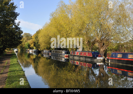 Autumn scenes on the Grand Union Canal in Hertfordshire, UK. - Stock Photo
