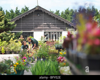 Female Garden Center Workers With Plants - Stock Photo