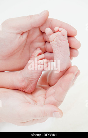 A colour color photograph of a newborn Caucasian baby's feet being cradled in its father's hands - Stock Photo