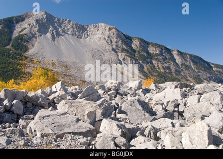 Frank Slide (massive rockslide from Turtle Mountain that buried town in 1903), Crowsnest Pass, Alberta, Rockies, - Stock Photo