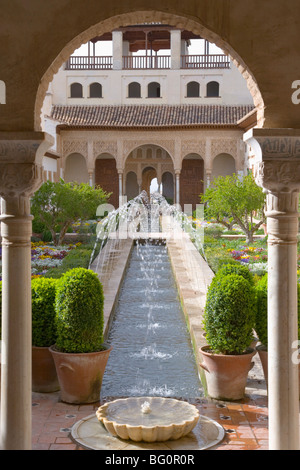 View through arch to Patio de la Acequia, centrepiece of the gardens of the Generalife, Granada, Andalucia (Andalusia), - Stock Photo