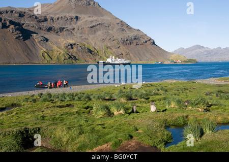 Grytviken, South Georgia, South Atlantic - Stock Photo