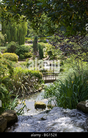 Pond and waterfall in Queen Marys Gardens, Regents Park, London, England, United Kingdom, Europe - Stock Photo