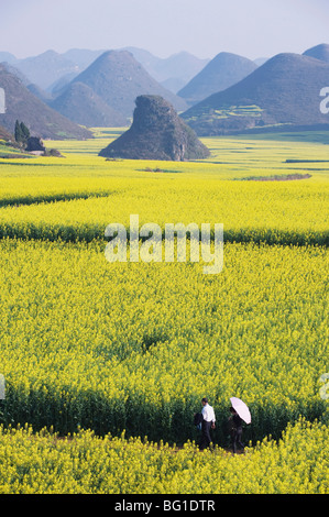 A couple walking through fields of rapeseed flowers in bloom in Luoping, Yunnan Province, China, Asia - Stock Photo