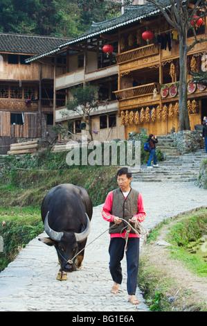 Farmer walking with his water buffalo, Langde village, Guizhou Province, China, Asia - Stock Photo