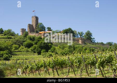 Wachtenburg, Pfalz wine area, Germany, Europe - Stock Photo