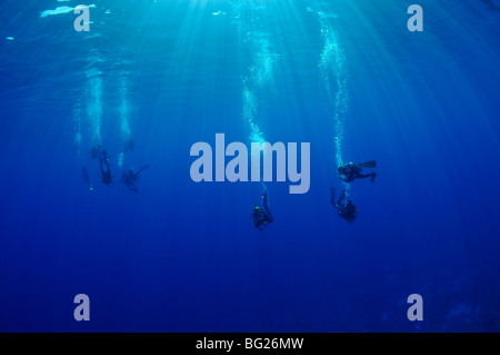 Group of scuba divers in blue water with sunbeams - Stock Photo