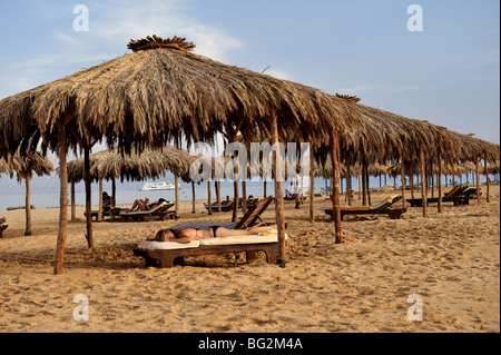 Sunbathing on tropical beach with thatched sunshades, Nuweiba, 'Red Sea', Sinai, Egypt - Stock Photo