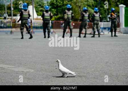 A white dove behind the UN policemen that guard the Presidential Palace in Port-au-Prince, Haiti. - Stock Photo