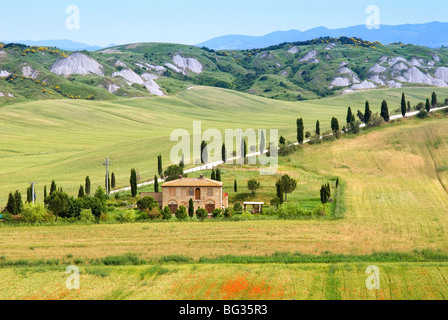 Crete Senesi area, near Asciano, Siena Province, Tuscany, Italy, Europe - Stock Photo