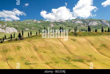 Crete Senesi area, near Asciano, Siena Province, Tuscany, Italy, Europe - Stock Photo