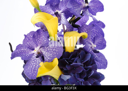 A close-up of purple and yellow flowers arranged together. - Stock Photo