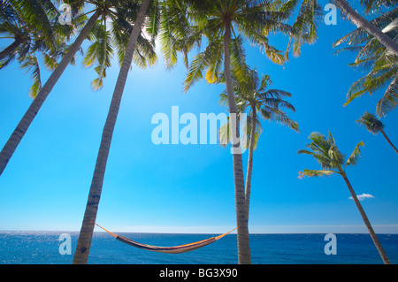 Hammock between palm trees on beach, Bali, Indonesia, Southeast Asia, Asia - Stock Photo