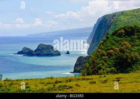 Pololu Valley, Kapaau coast, Big Island, Hawaii, United States of America, Pacific, North America