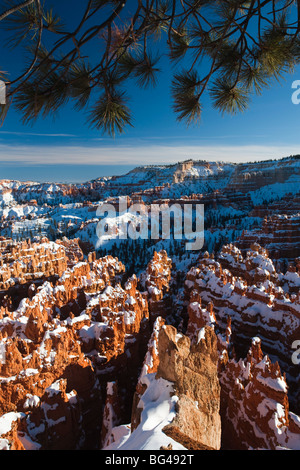 USA, Utah, Bryce Canyon National Park, Bryce Amphitheater between Sunrise and Sunset Points, winter - Stock Photo