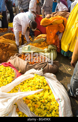 Woman buying marigolds tied up in cloth and sacking, flower market, Bari Chaupar, Jaipur, Rajasthan, India, Asia - Stock Photo