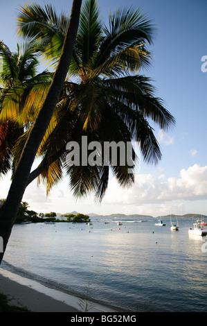 ST JOHN, US Virgin Islands - Cruz Bay Harbor on St. John in the US Virgin Islands - Stock Photo