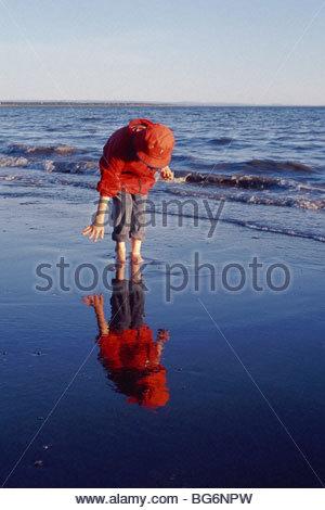 Alaska. Kenai Peninsula. A young boy walks along the beach at sunset. MR. - Stock Photo