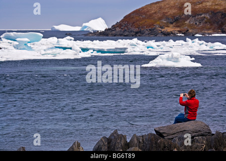 Woman iceberg watching from the shore in the town of Quirpon with pack ice in the harbour, Trails to the Vikings, - Stock Photo