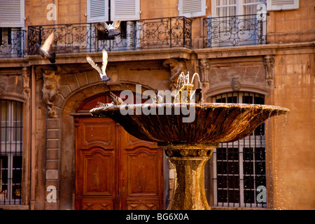 Pigeons playing in the fountain at Place d'Albertas in Aix en-Provence France - Stock Photo