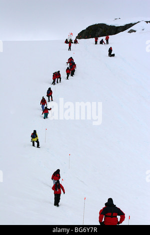 Expedition cruise ship passengers hiking up hill in order to slide back down, Paradise Bay, Antarctica - Stock Photo