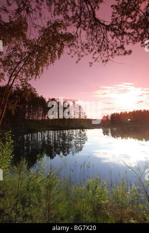 Finland Region of Southern Savonia Savonlinna Punkaharju Ridge Punkaharju Nature Reserve Saimaa Lake District Lake - Stock Photo