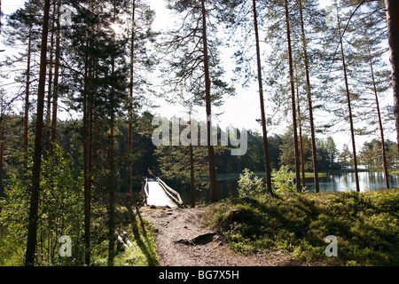 Finland Region of Southern Savonia Savonlinna Punkaharju Ridge Punkaharju Nature Reserve Saimaa Lake District Path - Stock Photo