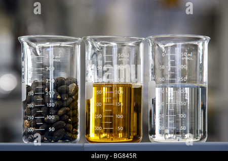 Production of bio-diesel in the BP research center in Bochum, Germany - Stock Photo