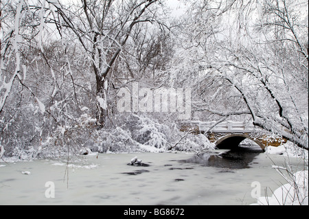 Heavy snow hangs on trees and bushes near Wingra Creek after 14-inches of snow blanked the Madison, Wisconsin. - Stock Photo