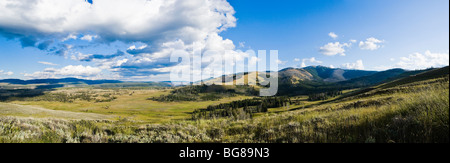 Mount Washburn and Antelope Creek valley, in Yellowstone National Park, Wyoming, USA. - Stock Photo