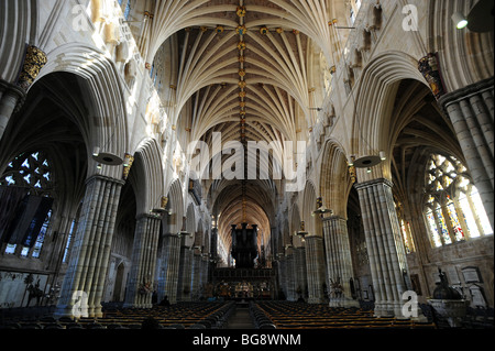 The interior of Exeter Cathedral showing the Nave and vaulting which is the longest stretch of Gothic vault in the - Stock Photo
