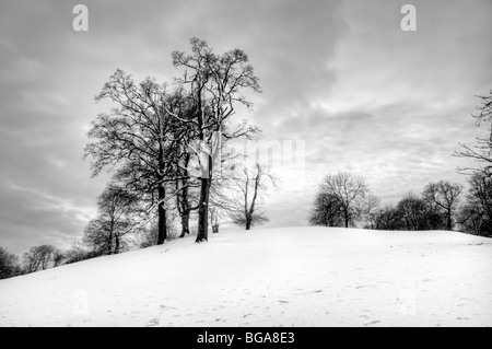 Black and white photo of snow covered scene of rolling hills and trees taken from Cotswold Way near Old Sodbury - Stock Photo