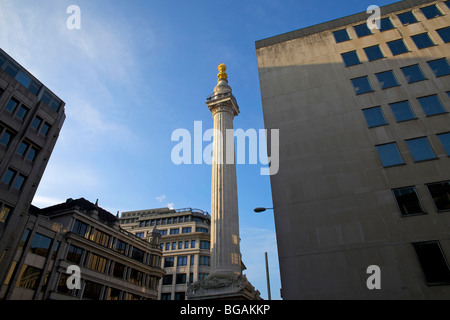 The Monument, a column marking the Great Fire of London as viewed from where the Fire's outbreak began in Pudding - Stock Photo