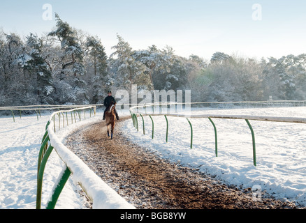 A Racehorse and rider in winter snow, Newmarket, Suffolk, UK - Stock Photo