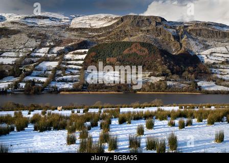 Ireland, County Sligo, Glencar, Glencar Lake with mountain backdrop and shamrock symbol in area of growing trees. - Stock Photo