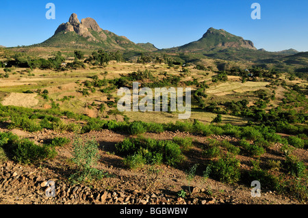 Terraced fields in the Adua, Adwa Mountains in Tigray, Ethiopia, Africa - Stock Photo