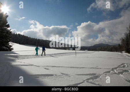 Cross-country skier at the Titisee lake in the snowy Black Forest, Baden-Wuerttemberg, Germany, Europe - Stock Photo