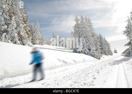 Winter forest with a blurred cross-country skier - Stock Photo