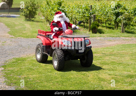Villigrad winery with farther Christmas riding a quad bike on Christmas day in vineyard - Stock Photo