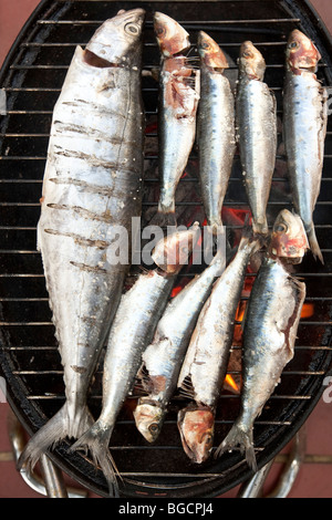 Grilled fish (sardines and a mackerel) cooking on a mini barbecue grill - Stock Photo