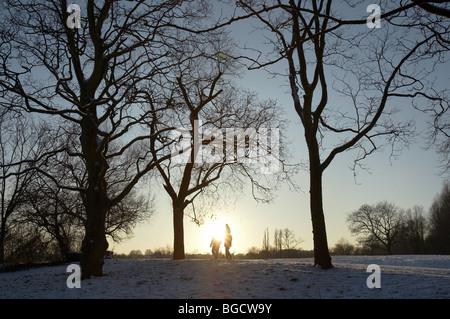 winter snow and ice on hampstead heath in london england uk - Stock Photo