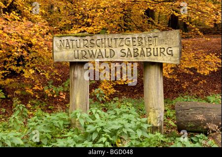 Entrance sign, nature reserve, Sababurg virgin forest, Reinhardswald, Hofgeismar, North Hesse, Hesse, Germany, Europe - Stock Photo
