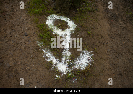 Arrow sign in powder or chalk on a path in a wood - Stock Photo