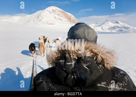 Dog sledding, East Greenland - Stock Photo