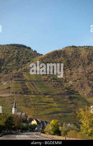 Wine growing town of Bremm, Bremmer Calmont with the steepest vineyards in the world, Mosel River, Rhineland-Palatinate, - Stock Photo