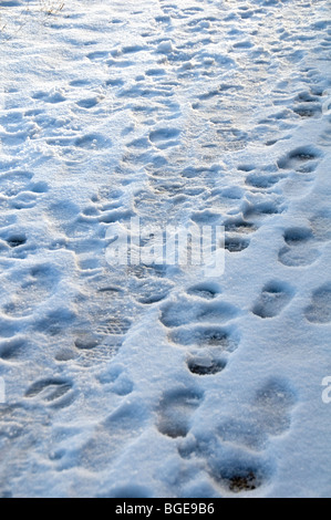 Footprints in the snow on a pavement in Manchester, England - Stock Photo