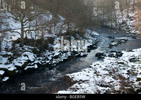The river Wharfe near Bolton Abbey, Wharfedale, North Yorkshire, England - Stock Photo