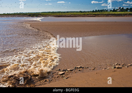 Tidal Bore on the Salmon River in Truro, Tidal Bore Road, Fundy Shore Ecotour, Glooscap Trail, Cobequid Bay, Nova - Stock Photo