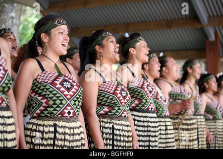 Polynesian Maori Culture Group (Ngaru Kaha) from Whangarei, dance a Kapa Haka during Waitangi Day celebrations at - Stock Photo