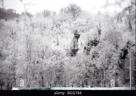 Floodlights at Withdean Stadium blend in with snow laden trees in Brighton Sussex UK winter wonderland - Stock Photo